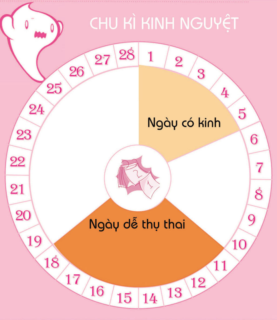 Tính ngày thụ thai